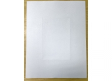 Blank Pre Perfed Sheets with Microperf Centre (500 per box)